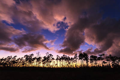 Photograph - Everglades Sunset by Jonathan Gewirtz