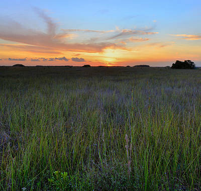 Art Print featuring the photograph Everglades Sunset by Stephen  Vecchiotti