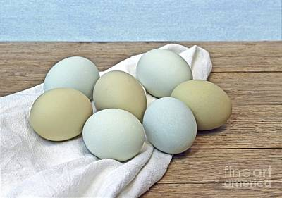 Photograph - Exotic Colored Chicken Eggs by Pattie Calfy