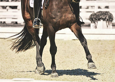 Photograph - Extend The Trot by JAMART Photography
