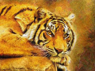 Digital Art - Eye Of The Tiger by Georgiana Romanovna