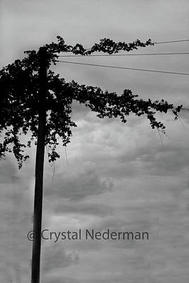 Photograph - F-6 by Crystal Nederman