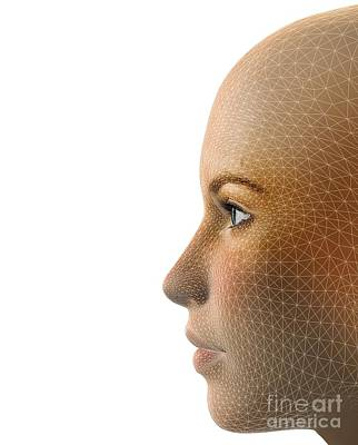 Digitized Photograph - Facemapping, Artwork by Claus Lunau