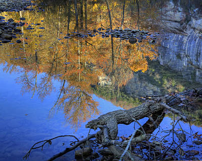 Fall Color At Big Bluff Art Print by Michael Dougherty