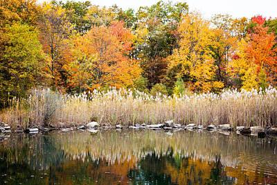 Nys Photograph - Fall Colors by Alexander Mendoza