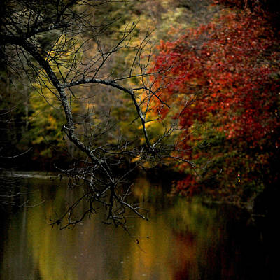 Photograph - Fall by Frank DiGiovanni
