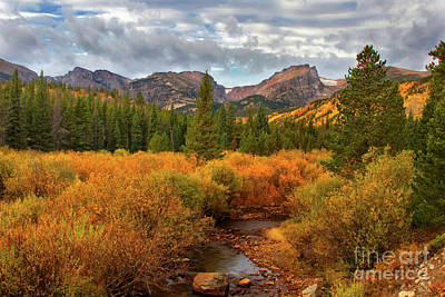 Fall In Rocky Mountain National Park Art Print by Ronda Kimbrow