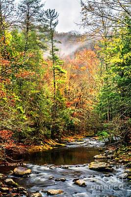 Photograph - Fall In The Mountains by Debbie Green