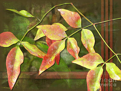 Leaves Digital Art - Fall Leaves In Summer by Sue Gardiner
