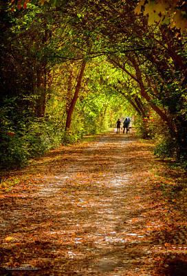 Photograph - Fall On Macomb Orchard Trail by LeeAnn McLaneGoetz McLaneGoetzStudioLLCcom