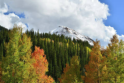Photograph - Fall On Red Mountain by Ray Mathis