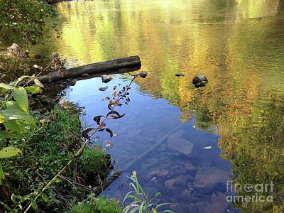 Photograph - Fall Reflection by Mark Messenger