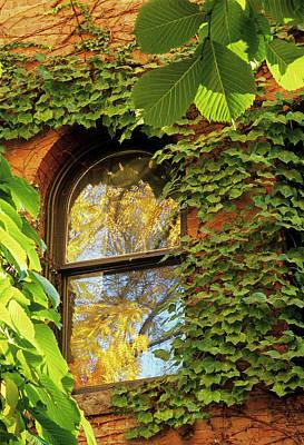 Photograph - Fall Reflections by Doug Davidson