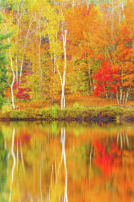 Photograph - Fall Reflections by Pierre Cornay