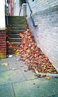 Fallen Leaves Art Print by Tom Gowanlock