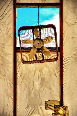 Photograph - Fan by Newel Hunter