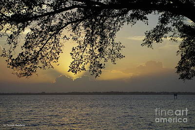 Photograph - Farewell Sunset by Tannis Baldwin