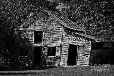 Photograph - Farm Days Past by Patrick M Lynch