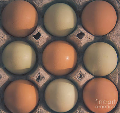 Photograph - Farm Fresh Eggs by Cheryl Baxter