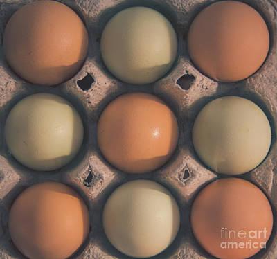 Photograph - Farm Fresh Eggs by Cheryl Baxter