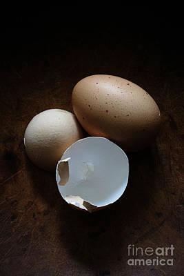 Farm Fresh Eggs Art Print by Edward Fielding