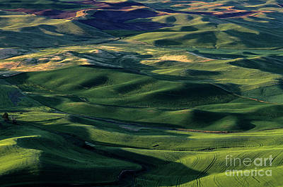 Photograph - Farm Land Eastern Washington by Jim Corwin