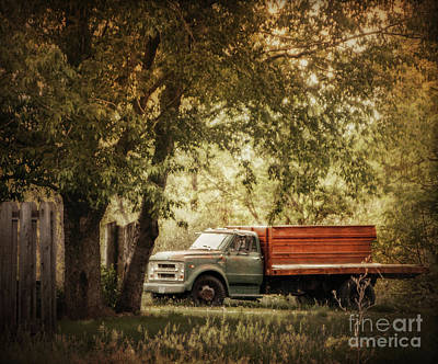 Photograph - Farm Truck by John Anderson