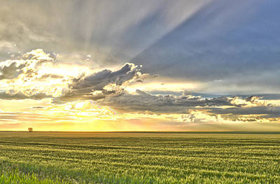 Photograph - Farmer's Sunset by Dwayne Schnell