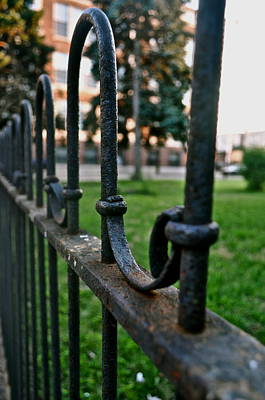 Photograph - Fence  by Brynn Ditsche