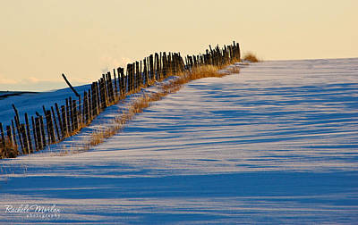 Ranch Photograph - Fence Line by Rachele Morlan