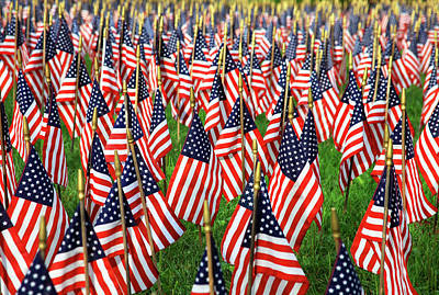 Photograph - Field Of Flags by Karol Livote