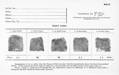 On Paper Photograph - Fingerprints, Historical Image by Middle Temple Library