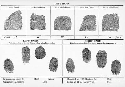 On Paper Photograph - Fingerprints, Lithograph From 1902 by Middle Temple Library