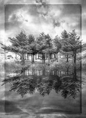 Fire In Black And White Art Print by Debra and Dave Vanderlaan