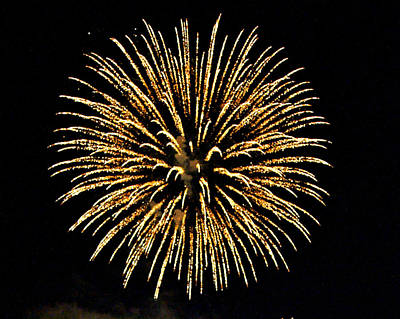 Fireworks Art Print by Carol Toepke