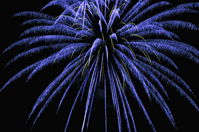Photograph - Fireworks by Joe Granita