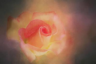 First Bloom Art Print by Terry Davis