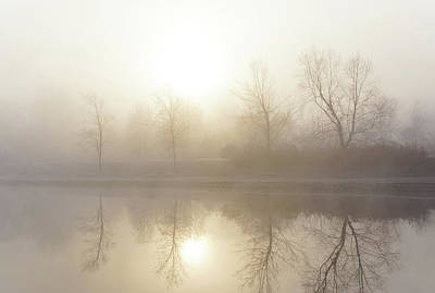 Photograph - First Light by Darlene Kwiatkowski