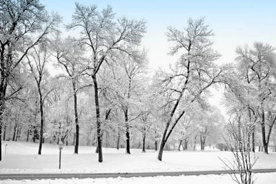 Park Scene Digital Art - First Snow by Kay Novy