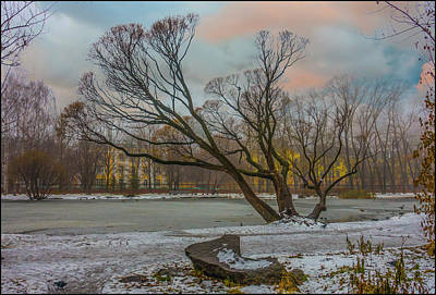 Photograph - First Snowfall by Vladimir Kholostykh