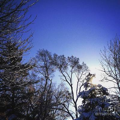 Photograph - First Thaw After The First Snow by Frank J Casella