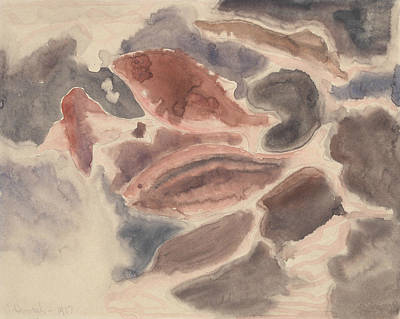 Drawing - Fish Series, No. 2 by Charles Demuth