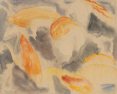 Drawing - Fish Series, No. 4 by Charles Demuth