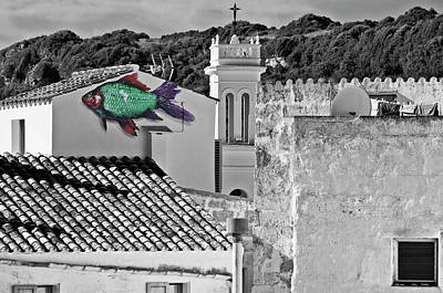 Photograph - Fish Swimming In Vintage Town Roofs by Pedro Cardona Llambias
