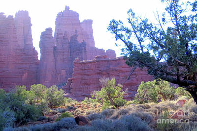 Photograph - Fisher Towers by Frank Townsley
