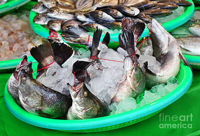 Photograph - Fishmarket In Taiwan by Yali Shi
