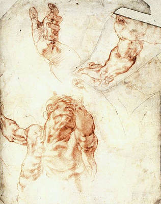 Closeups Drawing - Five Studies For The Figure Of Haman by Michelangelo Buonarroti