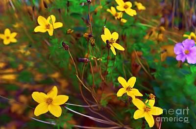 Photograph - Fleur by Isabella F Abbie Shores