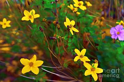 Photograph - Fleur by Isabella F Abbie Shores FRSA