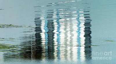 Photograph - Floating On Blue 45 by Wendy Wilton